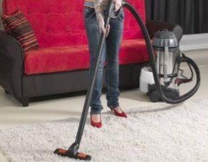 EMILIO – Parni čistač i usisavač